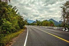 Asphalt road in rainforest Stock Photo