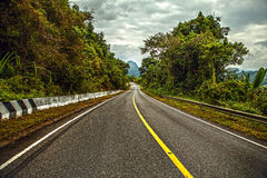 Asphalt road in rainforest Royalty Free Stock Photography