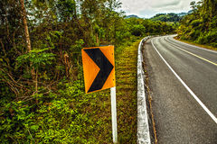 Asphalt road in rainforest Stock Photos