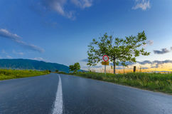 Asphalt road between rice fields Stock Images