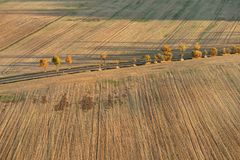 A asphalt road with rows of trees in autumn colors leads over an empty very dry field with traces of agricultural machinery, stock photos