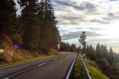 Asphalt road running along the slope overgrown with coniferous forest. Stock Photo