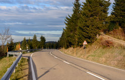 Asphalt road running along the slope overgrown with coniferous forest. Royalty Free Stock Photography