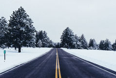 Asphalt road in snowy countryside