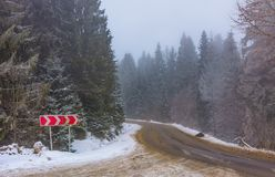 Asphalt road through spruce forest in fog. Transportation winter background with road sign Stock Images