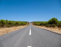 Asphalt Road sulla collina Fotografia Stock Libera da Diritti