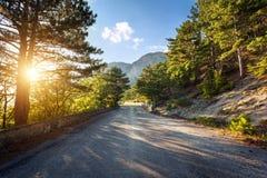 Asphalt road in summer forest at sunset. Crimean mountains Stock Images