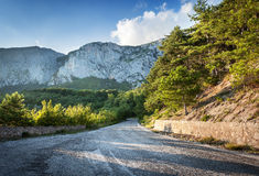 Asphalt road in summer forest at sunset. Crimean mountains Royalty Free Stock Image