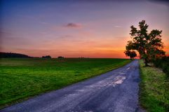 Asphalt road,  sunset over meadow and broad leaf  tree at summer evening, sky, Stock Photo