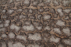 Asphalt road surface crack pattern Royalty Free Stock Photos