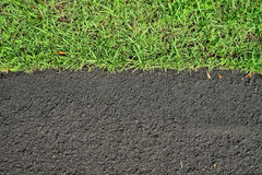 Asphalt road surface and green grass. New asphalt road surface and green grass Royalty Free Stock Images