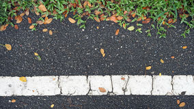 Asphalt road texture with green grass and orange falling leaves Royalty Free Stock Image