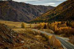 Asphalt road to the mountains of Altai passing through the autumn landscape stock photo