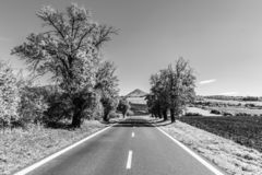 Asphalt road and typical conical volcanic hill of Central Bohemian Highlands on sunny summer day, Czech Republic. Black and white image royalty free stock image
