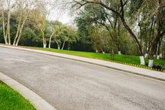 Asphalt road on verdant slope in spring Royalty Free Stock Photos