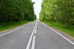 Asphalt road with a white marking Stock Image
