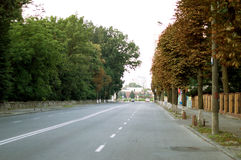 Asphalt road with white markings on city street Royalty Free Stock Image