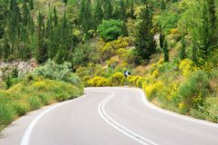 Asphalt road winding through flower hills Stock Photo