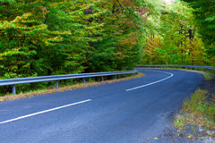 Asphalt road winding through the woods. Stock Images