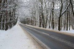Asphalt road in winter. The photo shows an asphalt road leading through the forest. It`s winter. The surface of the earth and the trees cover layer of snow Royalty Free Stock Photography