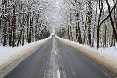Asphalt road in winter. The photo shows an asphalt road leading through the forest. It`s winter. The surface of the earth and the trees cover layer of snow Stock Images