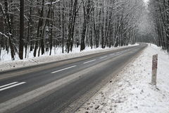 Asphalt road in winter. The photo shows an asphalt road leading through the forest. It`s winter. The surface of the earth and the trees cover layer of snow Royalty Free Stock Images