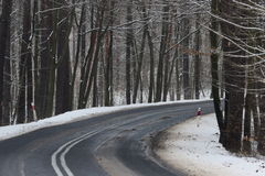 Asphalt road in winter. The photo shows an asphalt road leading through the forest. It`s winter. The surface of the earth and the trees cover layer of snow Royalty Free Stock Photos