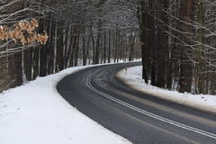 Asphalt road in winter. The photo shows an asphalt road leading through the forest. It`s winter. The surface of the earth and the trees cover layer of snow Royalty Free Stock Image
