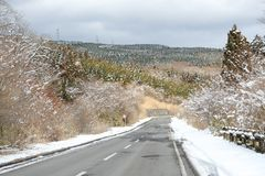 Asphalt road in the winter of Shizuoka prefecture, Japan. Winter of February 2011. Snow on the branches of the trees stock image