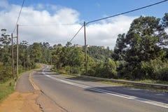Asphalt Road y árboles verdes que llevan a la ladera foto de archivo