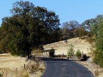 Asphalt Road y campos Foto de archivo libre de regalías