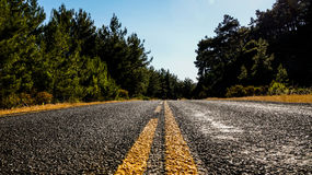 Asphalt road with yellow markings passing in the forest. Photo Royalty Free Stock Image