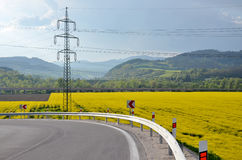 Asphalt route arround the oilseed rape field, electric column in background Stock Photography