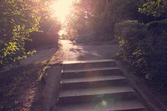 Asphalt stairs with sunshine Stock Photography