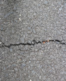 Asphalt texture with cracks Stock Image