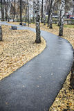 Asphalt track. Asphalt path in the Park. After autumn rain Royalty Free Stock Images