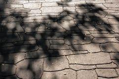 Asphalt- und Straßenstreifendetail Stockfotografie