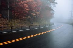 Asphalt wet road curve on the mountain forest under fog Stock Image