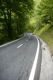 Asphalt winding curve road in a beech forest Royalty Free Stock Photography