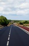 Asphalt Winding Road stock foto's
