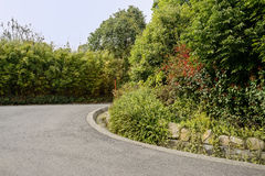 Asphalted curve in verdant spring on sunny day Royalty Free Stock Images