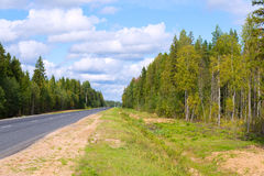 Asphalted road among autumn forest Royalty Free Stock Photography
