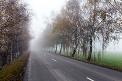 Asphalted road, autumn Stock Image