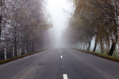 Asphalted road, autumn Royalty Free Stock Photo