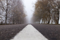 Asphalted road, autumn Royalty Free Stock Images