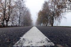 Asphalted road, autumn Stock Photos