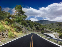 Asphalted road Stock Photography