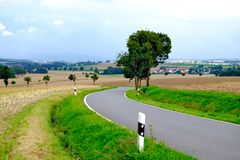 Asphalted road among fields Royalty Free Stock Images