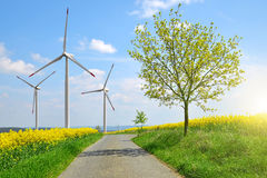 Asphalted road in rapeseed field in the background wind turbines. Stock Image