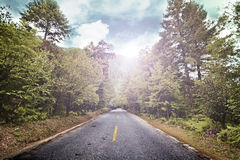 Asphalted road (spring) Stock Photos